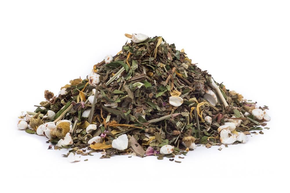 Manu tea KONOPE S PRÍCHUŤOU OVOCIA BIO - bylinný čaj, 10g