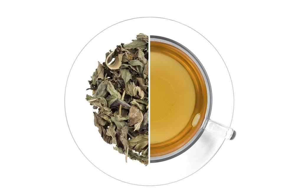 Oxalis Čaj Antigrip 50g