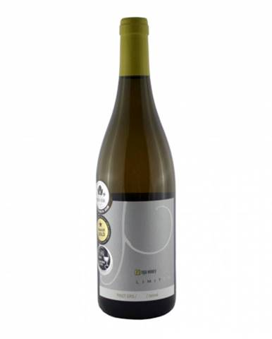 Repa Winery Pinot Gris 0,75l